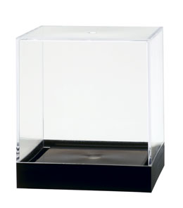 Clear Styrene Plastic Containers sith Black Base For Display
